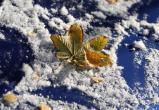 В выходные череповчанам обещают холода и снег