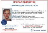 По пути из школы домой в Череповце пропал 14-летний подросток