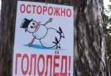 В Череповце гололёд сорвал график движения общественного транспорта