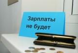 В Череповце возбудили дело по заявлению 23-летней начальницы швейного производства, которой полгода не выплачивали зарплату