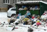 За новогодние праздники Череповец утонул в мусоре