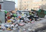 Одни отговорки: региональный оператор объяснил, почему не вывозил мусор в Череповце