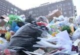 Активисты ОНФ выявили очевидное: мусор в Череповце не убирается