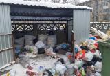 Олег Кувшинников велел разобраться с череповецким мусором до 14 января
