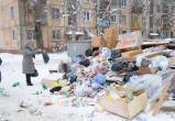 Прокуратура попросила сообщать ей о нарушениях мусорного оператора