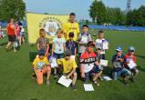 Череповецкие футболисты завоевали бронзу турнира «Золотое кольцо»