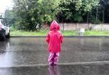 Погода в Череповце 15.06.2019