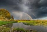Прогноз погоды в Череповце 08.07.2019