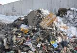 Почему провалилась «мусорная реформа», объяснил эколог