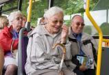 В Череповце пообещали сделать бесплатным проезд в автобусах