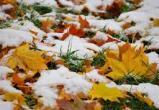 В Череповце на выходных выпадет снег