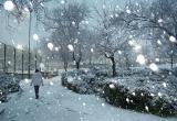 Снег в Череповец вернется во вторник
