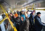 В Череповце увеличится стоимость проезда в общественном транспорте