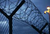 Грязовецкие заключенные не дождались алкоголя