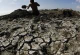 Грозит ли России голод из-за глобального потепления