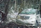 В Череповецком районе микроавтобус с детьми попал в ДТП
