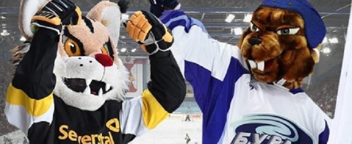 последние новости хоккейного клуба северсталь